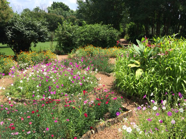 Amazing The Hermitage Gardens Nashville, TN Southeastern Native Plants
